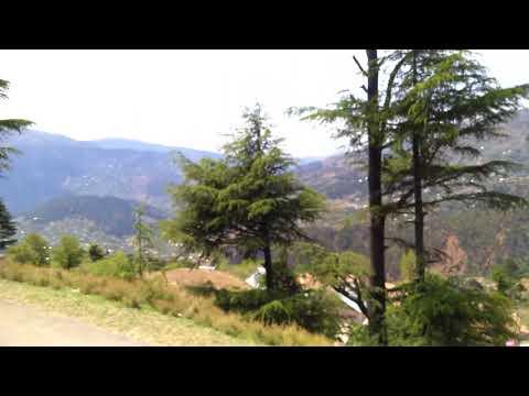 Jammu to Patnitop