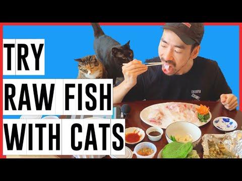 [#RAW FISH] Comparing Japan #Sashimi And Korea #Hoe