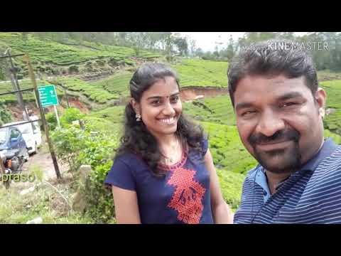 Munnar after Kerala flood. Can we go Munnar? Present situation of Munnar