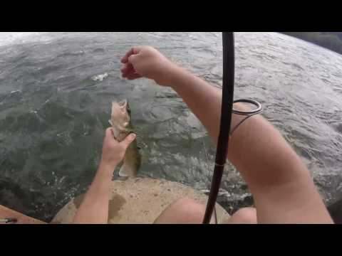 Summer Walleye Fishing on the Ohio River
