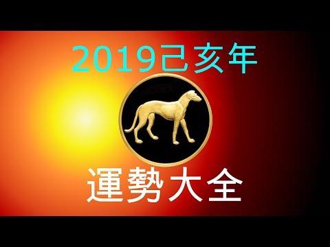 2019年己亥年運勢大合集:肖狗者