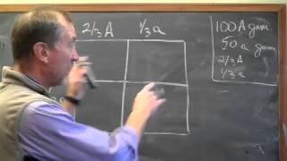 Lesson 26 Population Genetics medium