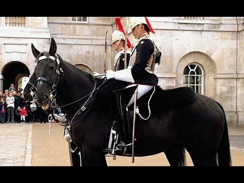 Don't Mess with the ROYAL GUARDS - Blues and Royals / How to RIDE A HORSE - 4K HD