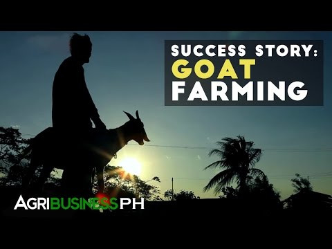 Goat Farming Success Story- Agribusiness Season 2 Episode 1 Part 3