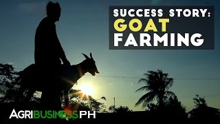 Goat Farming : Goat Farming Success Story | Agribusiness Philippines
