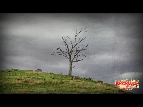 """""""The Tree on the Hill"""" by H. P. Lovecraft / A HorrorBabble Production"""