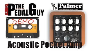 ThePedalGuy Presents the Palmer Acoustic Pocket Amp Pedal