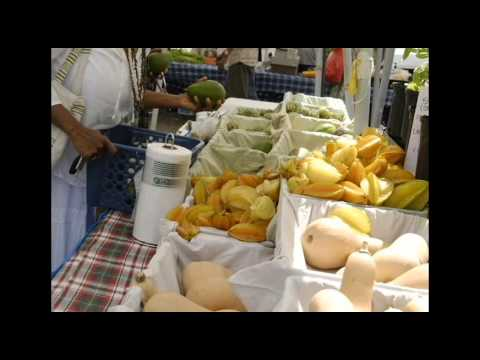 SAAFON Farmers (Southeastern African American Farmers Organic Network)