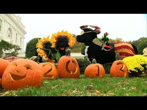 La maison blanche d cor e pour halloween youtube - Maison decoree halloween ...