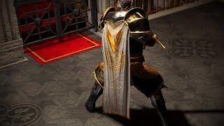 Path of Exile: Templar Cloak