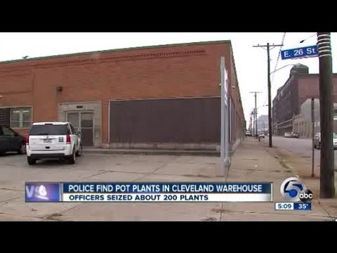 Pot bust at Cleveland warehouse