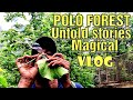 Bubbles from leaf | No Monkey Land | Place of Sins | Polo Forest Vlog | Hiren Amin | Anky Mishra