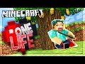 THE GOLDEN APPLE TREE!?   One Life SMP #9