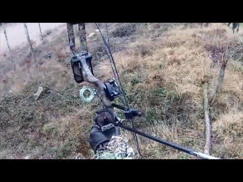 Une petite sortie de chasse à l'arc (grand gibier)