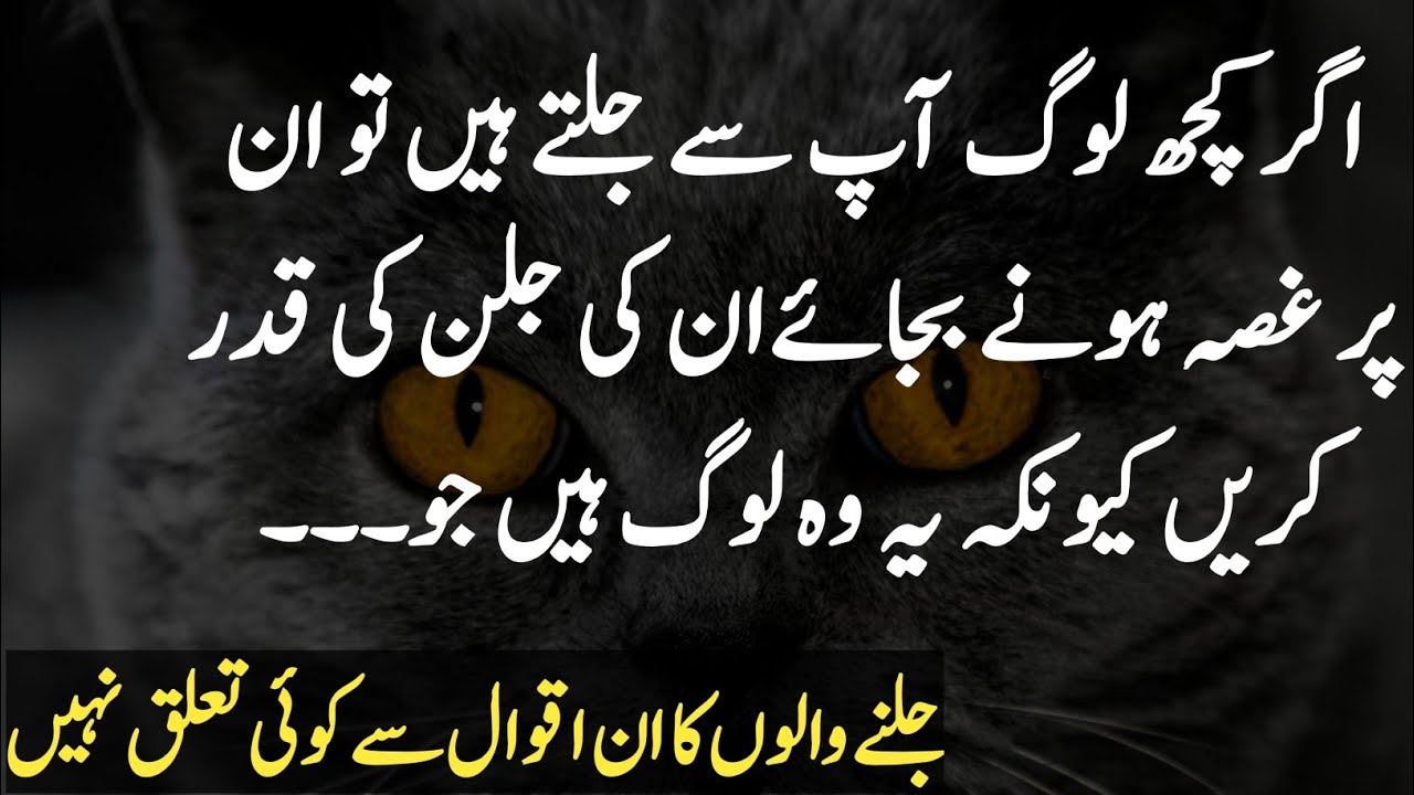 Most Beautiful Quotes in Urdu |Best Collecttions of Hazrat ...