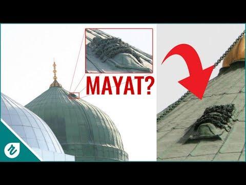 Ada Mayat Diatas Kubah Masjid Nabawi? Fakta Yang Jarang Diketahui (n0nton sampai h4bis)