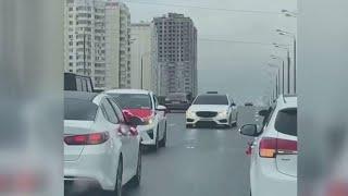 Фото В Москве задержаны участники свадебного кортежа, накануне блокировавшие движение на Варшавском шоссе