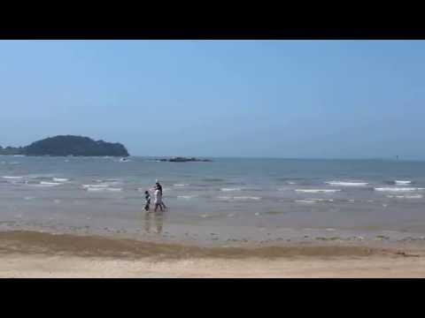 충남 서해안의 무창포해수욕장 찾다. OTN뉴스 제공