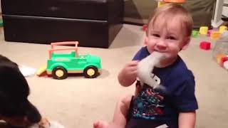 If you laugh you win - cute kids and puppies playing videos- compilation 1