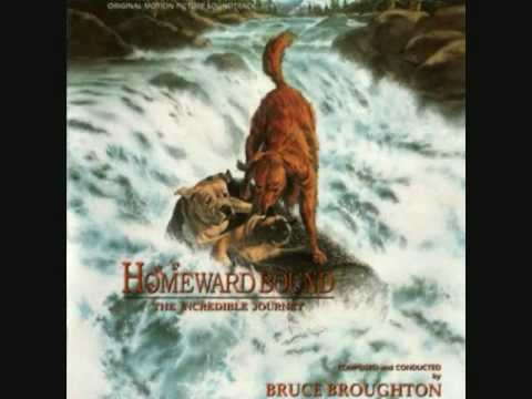 """Homeward Bound: The Incredible Journey """"End Credits"""""""