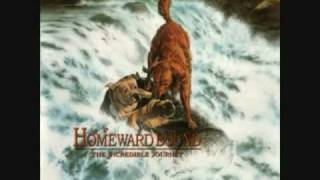 "Homeward Bound: The Incredible Journey ""End Credits"""
