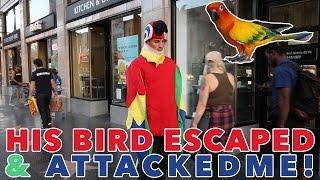 DRESSED AS A PARROT IN PUBLIC! BIRD ATTACKS!   Mark Dohner & Amanda Cerny