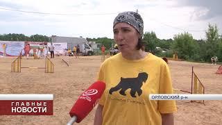 В Орловской области прошли профессиональные соревнования собак