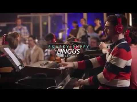 Snarky Puppy Lingus M League Youtube