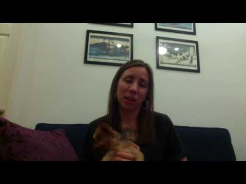 Lauren Ellis WOF video