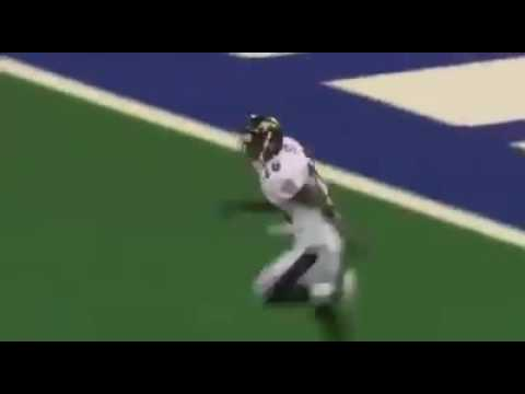 Ed Reed destroys colts player