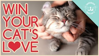 Speaking Cat: 5 Ways to Show Your Cat You LOVE Them