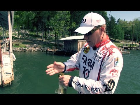How to Skip Docks with Bassmaster Pro Andy Montgomery