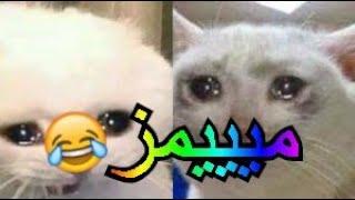 ميمز العرب 😂😂 ميمز 2020