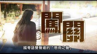 電視節目 TV1367 闖關 (HD粵語) (委內瑞拉系列)