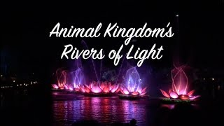 Rivers of Light | Vlog | Nikki Stixx