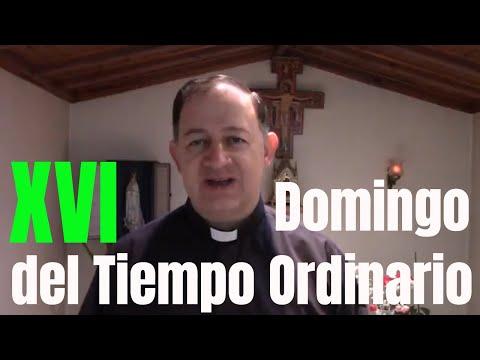 Domingo XVI del Tiempo Ordinario (22 de julio de 2018) Como un Buen Pastor