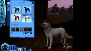 Sims 3 pets - How to Create a wolf/wolf pack tutorial PART 1