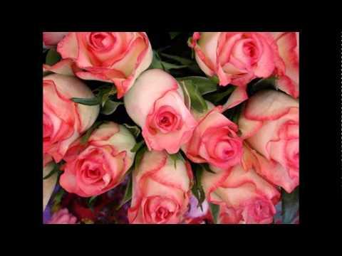Красивые #букеты цветов фото розы, лилии и другие