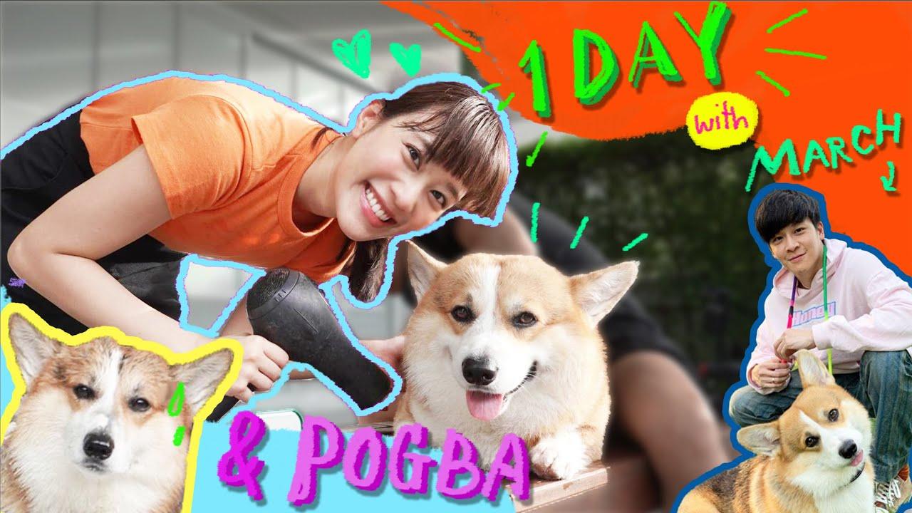 ก่อนหมาตัวจริงจะมา ขอลองเลี้ยงพ็อคบา 1 วัน! Meenakom x Kemisara | Kemisara Paladesh