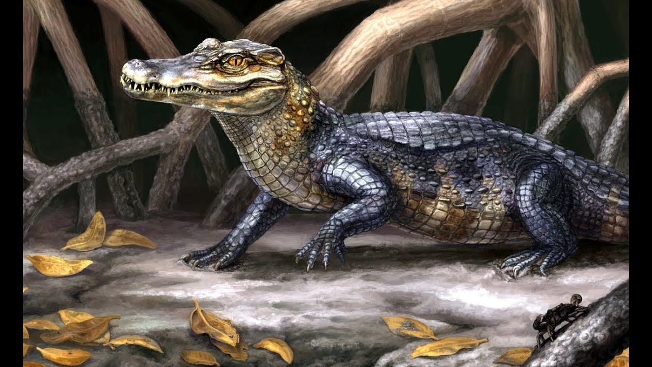prehistoric alligators and crocodiles wwwimgkidcom