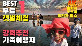 4K 세계5대 갯벌 선정 / 가족여행지 추천 / 무료 …