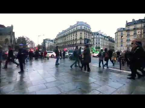 Ep 04 Post-Tour Café Chat - Les Deux Magots (Saint Germain d