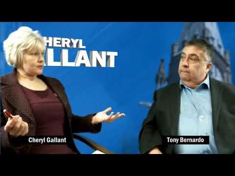 Talking with Tony Bernardo about C-71