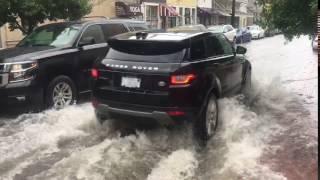 Flooding on Oak Street near Carrollton Avenue in New Orleans