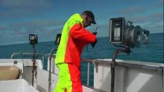 Repeat youtube video ISLANDE, pêche à la morue  -