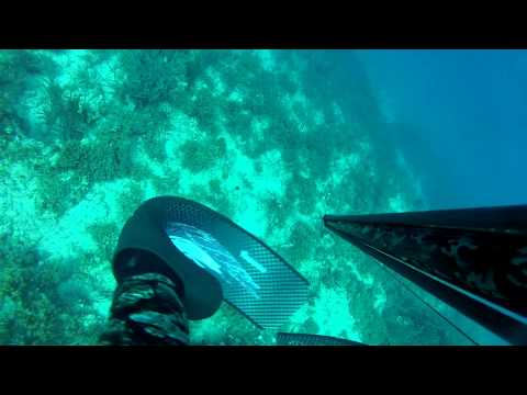 Spearfishing north ionian sea