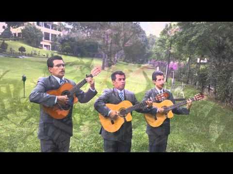 Trío Huatusco - Huatusqueña (VIDEO OFICIAL 2014)