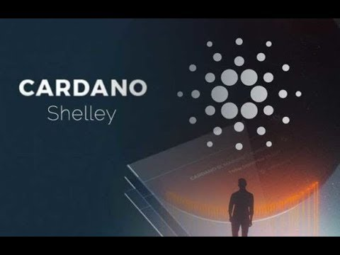 Cardano ADA Future Price And Shelley On Main Net