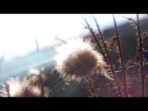Spiffy Man - Farewell feat. Progley (Sauniks Remix)