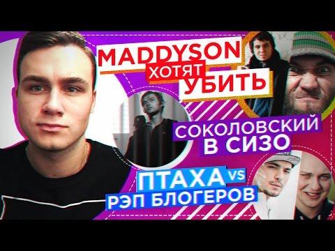 Чеченцы хотят УБИТЬ Мэддисона, ВОЙНА: Птаха vs. Блогеры, Соколовский в тюрьме
